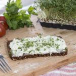 Mit der gesunden Stulle zurück zu kulinarischen Ursprüngen