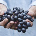 Mindful Eating — Täglich Achtsam Essen