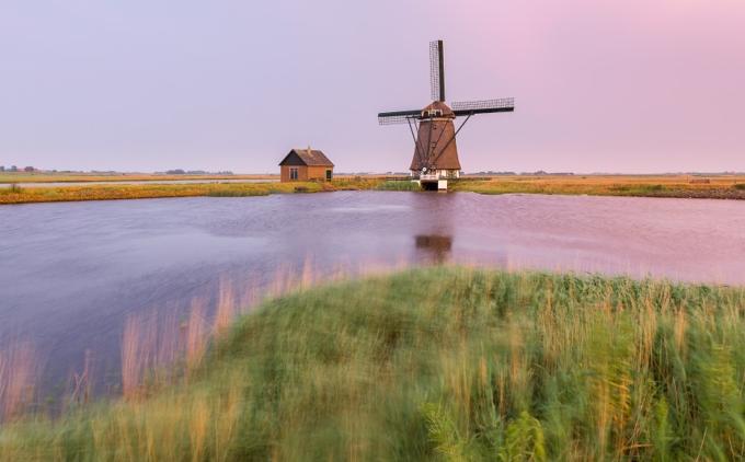 Rede von Texel, Woolness, Dünen von Eierland und Flugbegeisterung über einer Insel