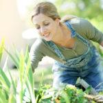 10 Top-Gartentipps für Anfänger