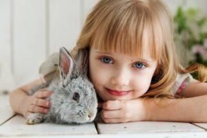 Ist es schlimm wenn Kaninchen Pappe fressen