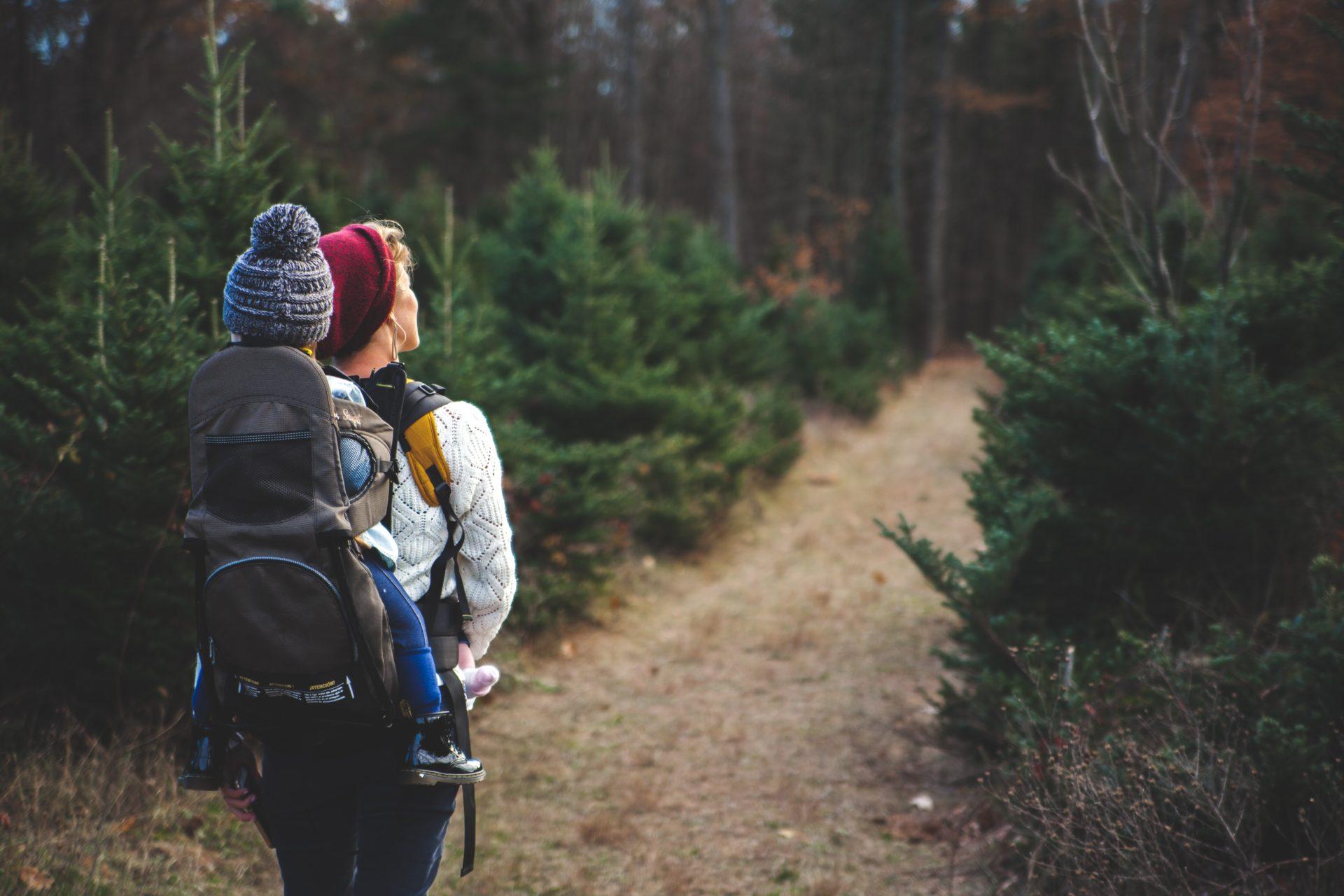 Wo in Deutschland Urlaub machen? 2020 – Eine Reise in natürliche und unberührte Gebiete unserer Bundesländer. (Teil 4)