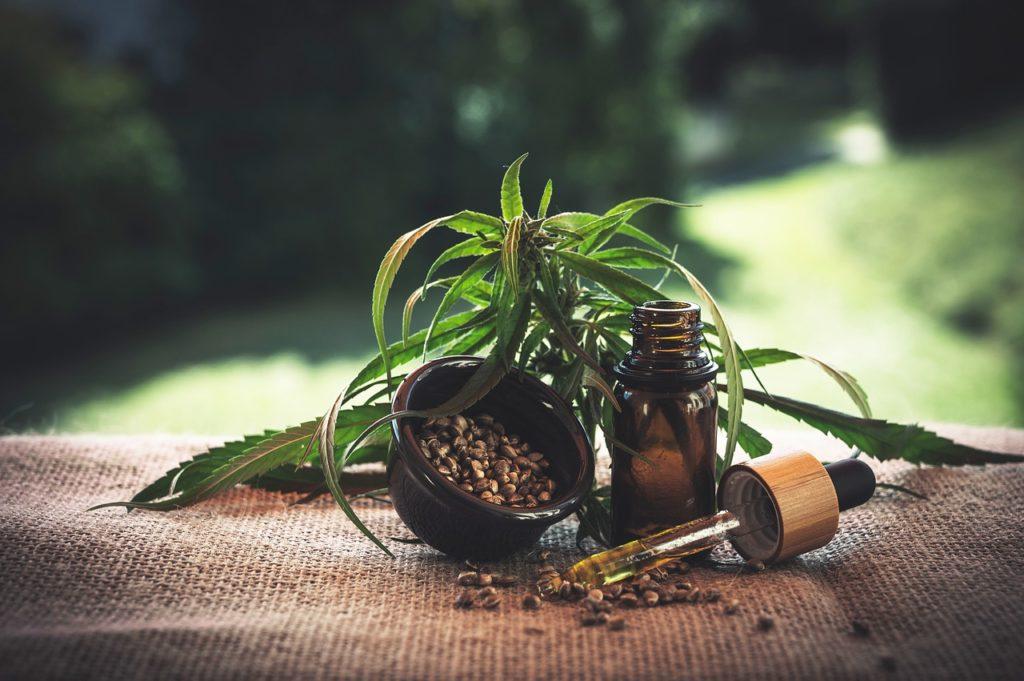 Hanf ist eine uralte Nutzpflanze, die viele körperliche und seelische Gebrechen kurieren kann. In Form von CBD wird das alte Wissen wieder modern.